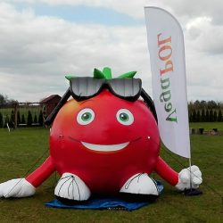 Pomidor dmuchany wys 3m Parsitech