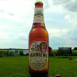 piwo braniewo